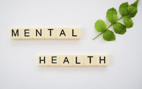 Pandemic stress is causing a down fall in over all health of the community, especially mental health